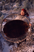 A Cree woman, Elizabeth Brien, with beaver skin stretched out to dry. North Quebec, Canada. 1988