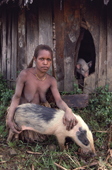 Oropa, a Yali woman from the Seng Valley, with her pigs. Women look after the pigs. Irian Jaya, Indonesia. 1990