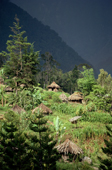 The Yali village of Holuwon, in the Heluk Valley, Rainforests of Irian Jaya, Indonesia. 1990
