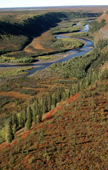 The Kugalik River valley in autumn colour. N.W.T. Canada. 1996