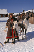 Marta, an Evenk woman with two draft reindeer in Surinda. Evenkiya, Siberia, Russia. 1997