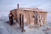 Velodia Dirkatch, a Sami reindeer herderfrom Lovozero, carries firewood into his hut. Murmansk, NW Russia. 2005
