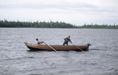 Sami men set out in a wooden boat to check their fishing nets near Lovozero (Strong Lake). Kola Peninsula, NW Russia. 2005