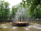 Fountain in the grounds of Peterhof Palace. Near St. Petersburg, Russia. 2010